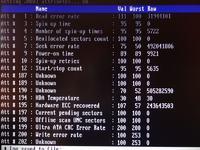 Dysk WD - Problem z instalacja XP po usuni�ciu partycji