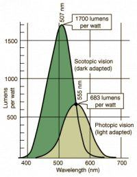 Purpurowe diody LED szansą na naturalniejsze światło z lamp diodowych