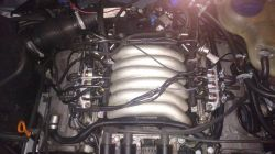Audi a6c5 2.8 - trzęsie na LPG