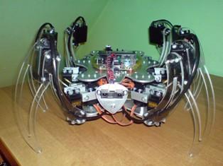 Hexapod, pierwsza konstrukcja