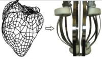 Symulator pracy serca Dr. David Keeling