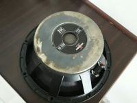 Uszkodzony głośnik B&C Custom 300W 8Ohm (HK1208), naprawa czy zamiennik?