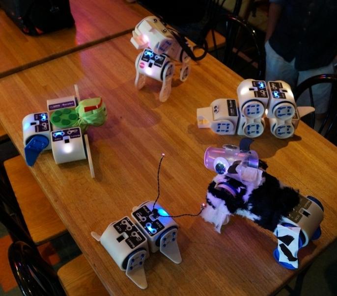 Uniwersalny modu� do tworzenia r�nych robot�w Linkbot