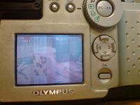 Olympus C-2500L-Rozebra� i inne, czyli moje boje z cyfr�wk�