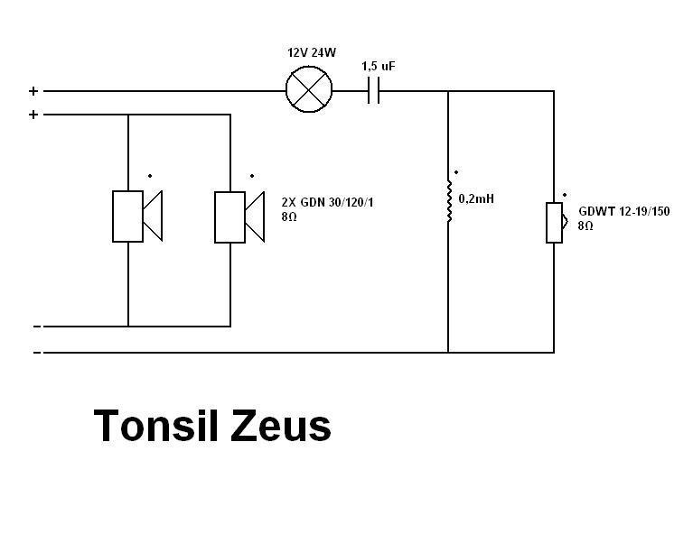 Tonsil Zeus Diy Zwrotnica