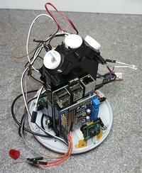 RabbitPi - cyfrowy asystent Internetu Rzeczy z Alexa