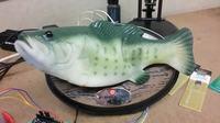 Gadająca ryba wykorzystująca Alexa