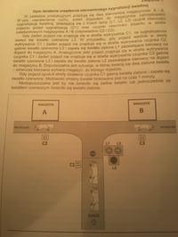 Egzamin zawodowy - technik mechatronik 2012 czerwiec