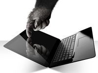 Gorilla Glass NBT - nowe szk�o Corninga do laptop�w dotykowych