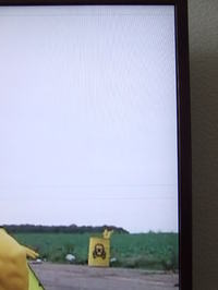 Toshiba Regza 46xf351p poziome szare linie