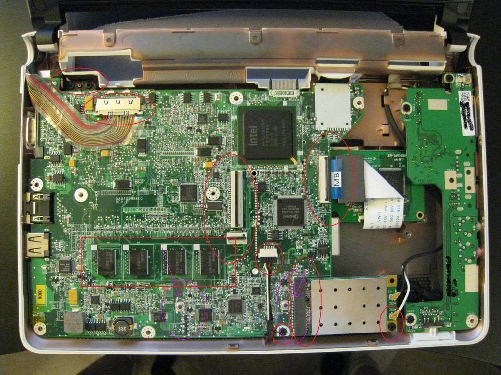 Acer Aspire One zalany przez kota