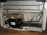 Chłodziarko-zamrażarka Amica AZC 4103 mrozi ale nie chłodzi.