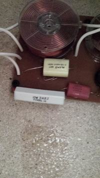Tonsil Altus 300 - Nie działają głośniki wysokotonowe