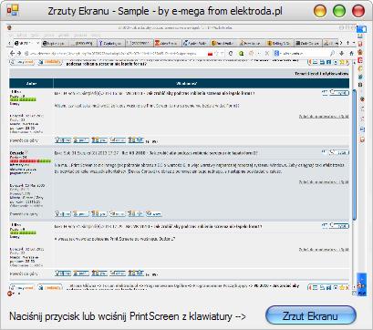 VB 2010 - Jak zrobić że po wciśnięciu Button1 zrobi Print Screen?