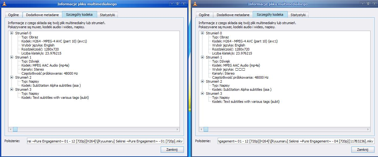 Samsung c650 Problem z kodekami