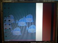 Laptop Elitegroup 557c - matryca