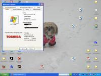 Toshiba Satellite L20-182 i k. WiFi WM3A2100 - nie działa