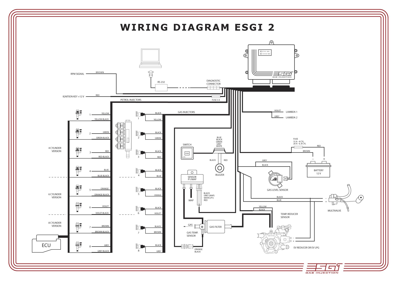 Esgi - Scenic 2 0 - Brak Czasu Wtrysku Benzyny