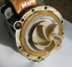 Polar PS 663 P BIO - pompa kręci - nie odprowadza wody