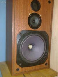 Kolumny Diora zgb 60-8-901 (100 W) - wymiana głośników