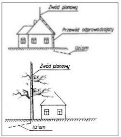 Instalacja odgromowa drzewa