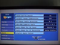 Panasonic DMR-HS2 - Brak dźwięku na niektórych programach analogowych