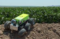 AGRowBot: autonomiczny robot rolniczy do monitorowania roślin