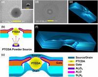 Rekord w ruchliwo�ci elektron�w tranzystora organicznego