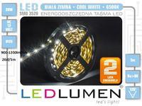 Jaką oświetlenie LED kupić?