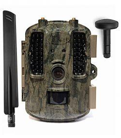 Czy jest sens wymieniać antenę w kamerze leśnej