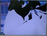 Biały pionowy pasek na matrycy laptopa COMPAL, biała kreska